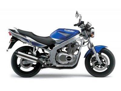 GSE 500
