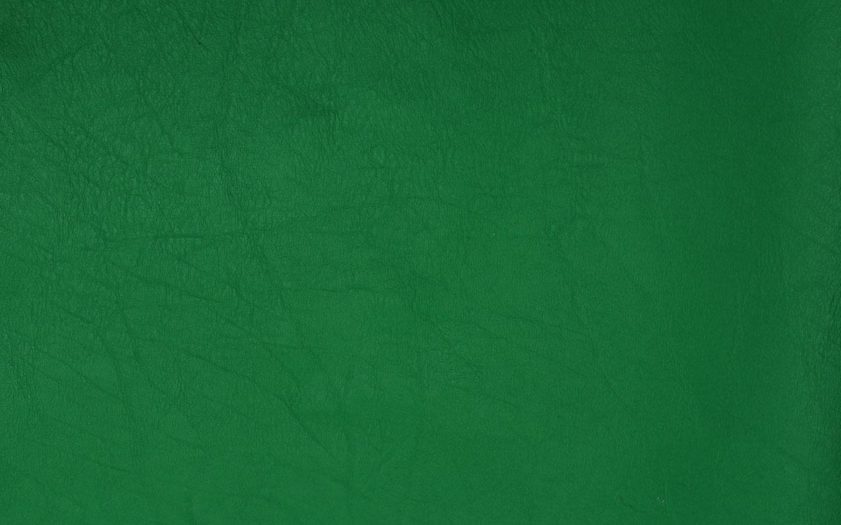Vert primaire